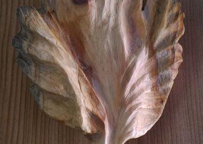 wood leaf